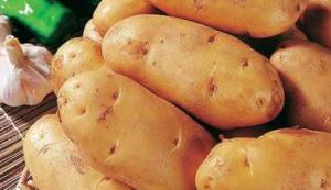 potato, potato minitubers, potato seeds